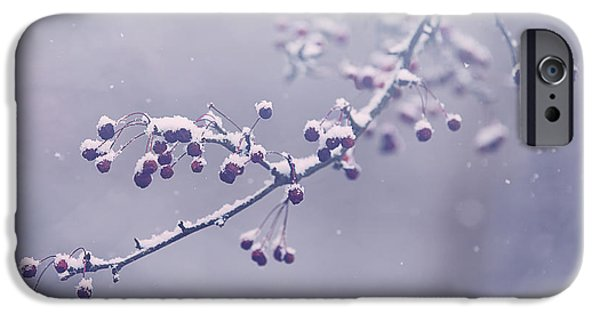 Snow iPhone Cases - Snowberries iPhone Case by Carrie Ann Grippo-Pike