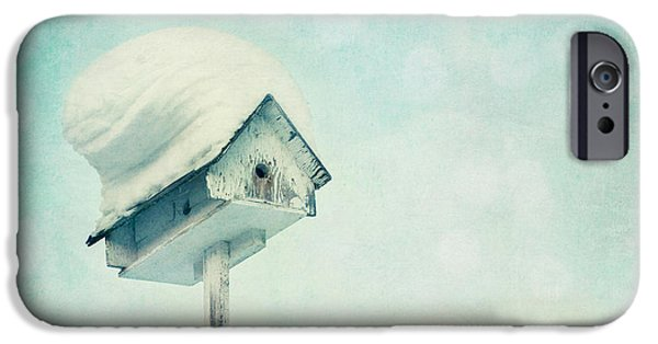 Birdhouse iPhone Cases - Snowbirds Home iPhone Case by Priska Wettstein