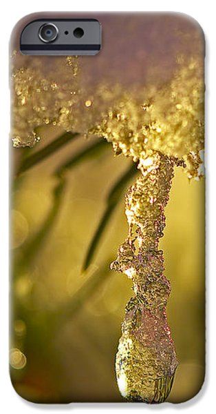 Snowdrop Crystal iPhone Case by Sharon  Talson