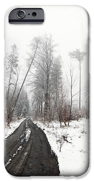 Snowy Day iPhone Cases - Snowfall iPhone Case by Michal Boubin