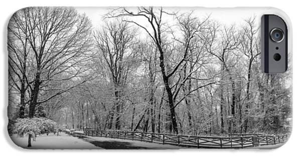 Harsh Conditions iPhone Cases - Snowfall Pano iPhone Case by Brian Wallace