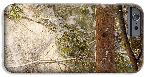 Snowy Day iPhone Cases - Snowfall iPhone Case by Tracy Winter