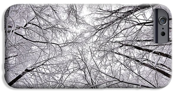 Indiana Landscapes Photographs iPhone Cases - Snowstorm iPhone Case by Benjamin Yeager