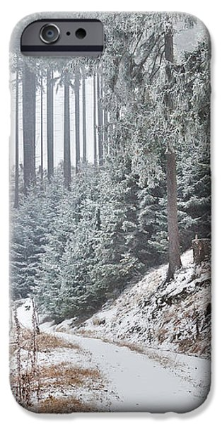 snowstorm in old forest iPhone Case by Olha Rohulya