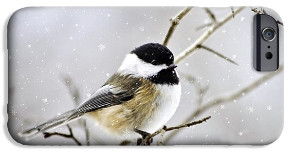 Rollo Digital Art iPhone Cases - Snowy Chickadee Bird iPhone Case by Christina Rollo