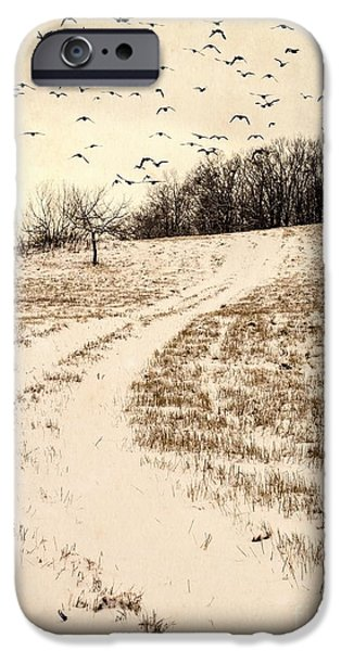 Agricultural iPhone Cases - Snowy Country Road iPhone Case by Edward Fielding
