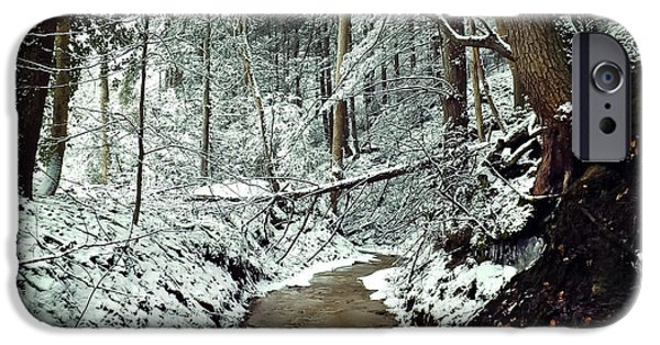 Snowy Brook iPhone Cases - Snowy Creek iPhone Case by Lena Auxier