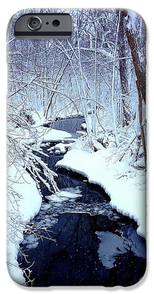 Snow iPhone Cases - Snowy Day iPhone Case by Jeff Klingler