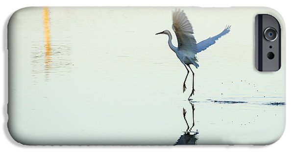 Snowy Pyrography iPhone Cases - Snowy Egret 4 iPhone Case by Mary Barrett