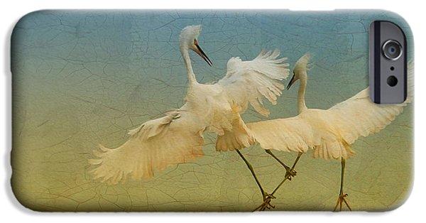 Snowy Egret iPhone Cases - Snowy Egret Dance iPhone Case by Deborah Benoit
