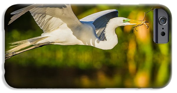 Fauna iPhone Cases - Snowy Egret Flying with a Branch iPhone Case by Andres Leon