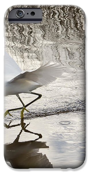 Snowy Egret Gliding Across the Water iPhone Case by John Bailey