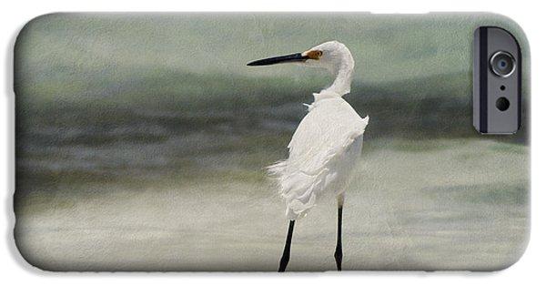 Snowy Egret iPhone Cases - Snowy Egret iPhone Case by John Edwards