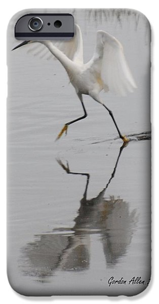 Snowy Pyrography iPhone Cases - Snowy Egret walking on water iPhone Case by Gordon  Allen