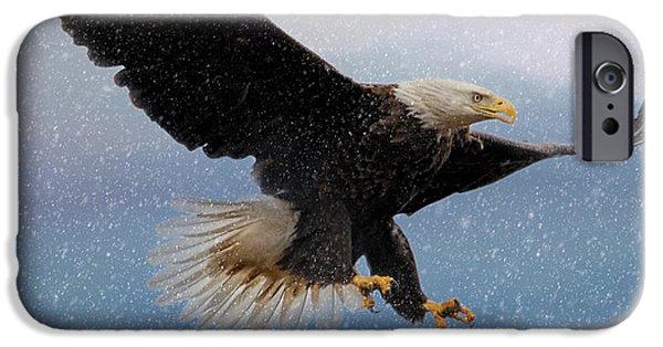 Snow Scene iPhone Cases - Snowy Flight - Bald Eagle - Square iPhone Case by Jai Johnson