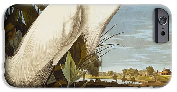 Heron Paintings iPhone Cases - Snowy Heron Or White Egret iPhone Case by John James Audubon