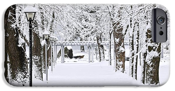 Pathway iPhone Cases - Snowy lane in winter park iPhone Case by Elena Elisseeva