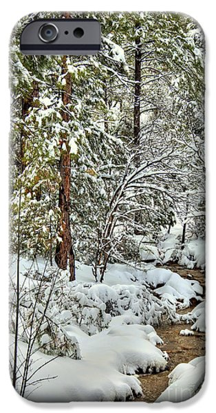 Prescott iPhone Cases - Snowy Mountain Creek iPhone Case by K D Graves