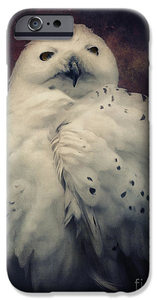 Snowy Mixed Media iPhone Cases - Snowy Owl iPhone Case by Angela Doelling AD DESIGN Photo and PhotoArt