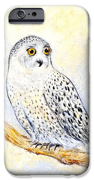 Snowy Pastels iPhone Cases - Snowy owl iPhone Case by Kurt Tessmann