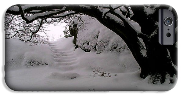 Snow Scene iPhone Cases - Snowy Path iPhone Case by Amanda Moore