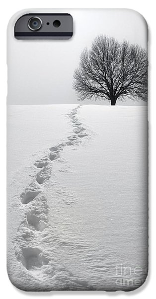 Snow Scene Landscape iPhone Cases - Snowy Path iPhone Case by Diane Diederich