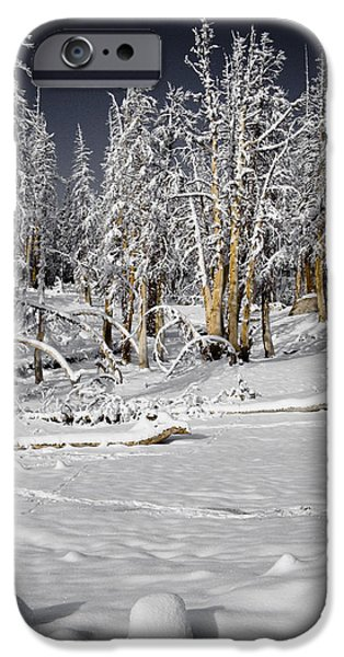 Snow Scene iPhone Cases - Snowy Silence iPhone Case by Chris Brannen