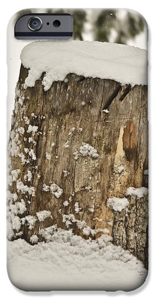 Snowy Mixed Media iPhone Cases - Snowy Stumptown iPhone Case by Trish Tritz