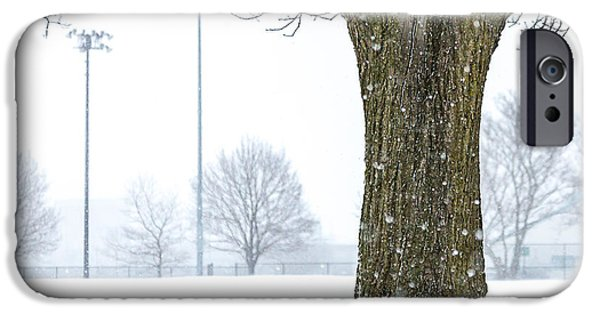 Boston iPhone Cases - Snowy Tree 3 in Memorial Park iPhone Case by Susan Cole Kelly