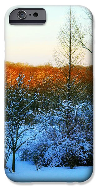 Snowy Trees in December Twilight - Pearl S. Buck Homestead iPhone Case by Anna Lisa Yoder