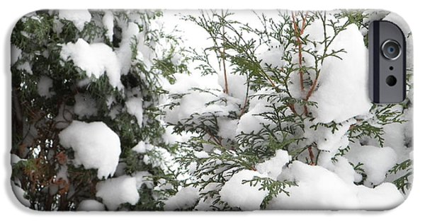 Snow Scene iPhone Cases - Snowy Trees iPhone Case by Penny Homontowski