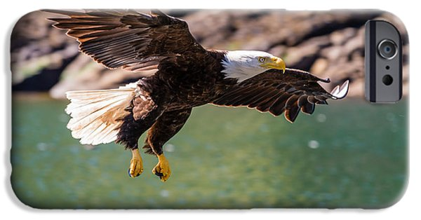 Eagles iPhone Cases - Soaring Eagle iPhone Case by Ian Stotesbury