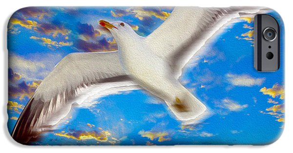 Flying Seagull iPhone Cases - Soaring iPhone Case by Jon Neidert