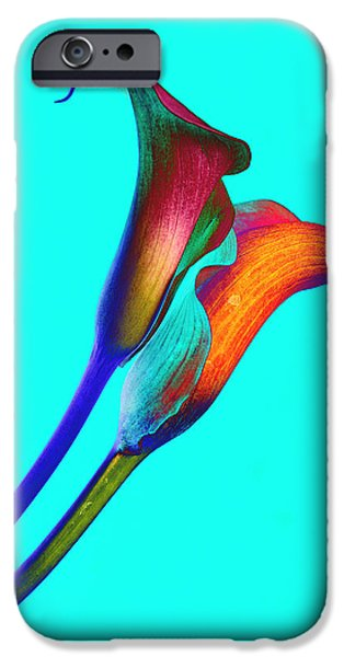 Purple Sensation iPhone Cases - Soaring Passion iPhone Case by Michael Brodie