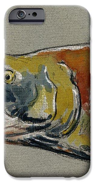 Sockeye salmon head study iPhone Case by Juan  Bosco