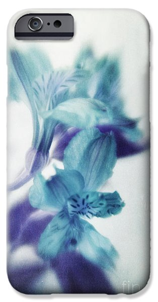 Close Up Floral iPhone Cases - Soft Blues iPhone Case by Priska Wettstein