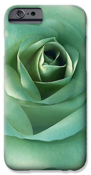Soft Emerald Green Rose Flower iPhone Case by Jennie Marie Schell