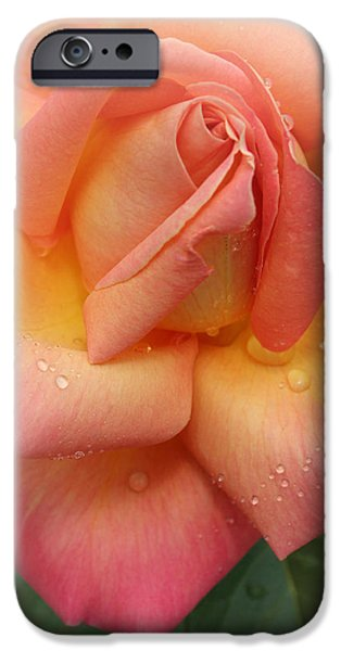 Summer iPhone Cases - Soft Hearted iPhone Case by  The Art Of Marilyn Ridoutt-Greene