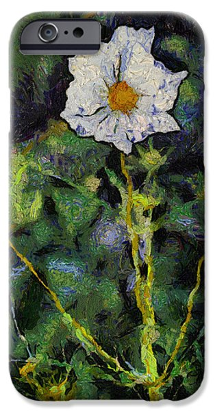 Asymmetrical iPhone Cases - Soft Morning Sunshine On A White Flower 04 iPhone Case by Thomas Woolworth
