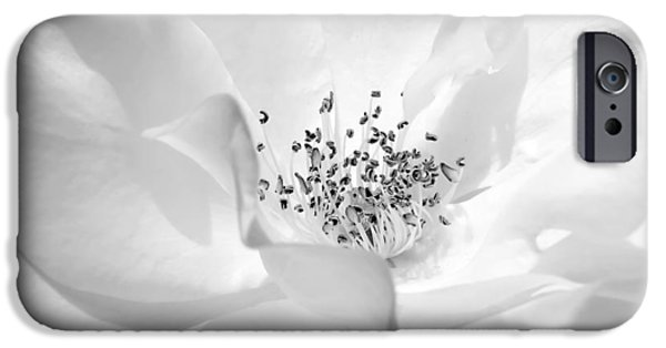 Petals iPhone Cases - Soft Petal Rose in Black and White iPhone Case by Jennie Marie Schell