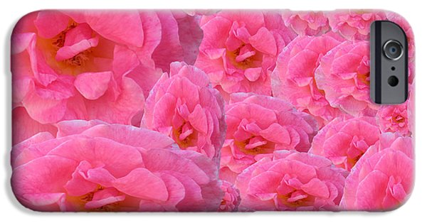 Multimedia iPhone Cases - Soft Pink Roses iPhone Case by Tina M Wenger