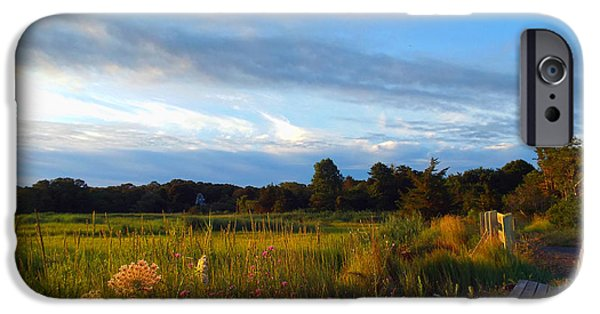 East Dennis Ma iPhone Cases - Soft Summer Morning iPhone Case by Dianne Cowen