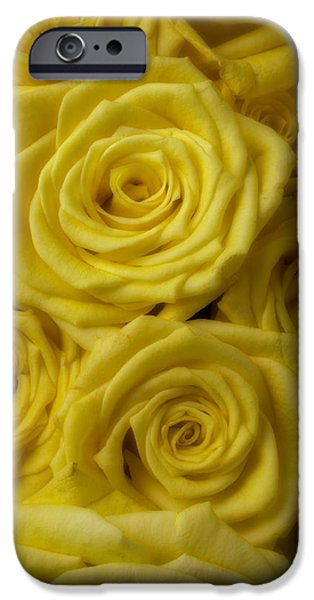 Soft Photographs iPhone Cases - Soft Yellow Roses iPhone Case by Garry Gay