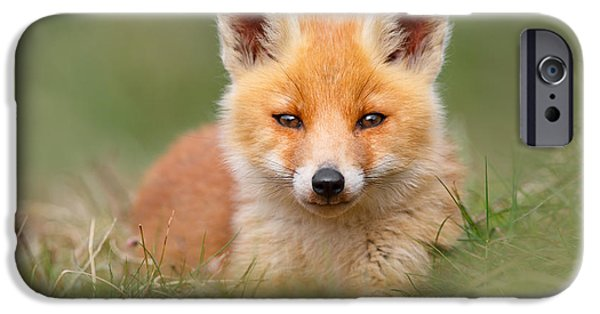 Cute. Sweet iPhone Cases - SoftFox -Young Fox Kit Lying in the Grass iPhone Case by Roeselien Raimond