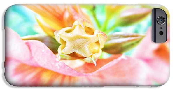 Pinkish iPhone Cases - Softness iPhone Case by Marianna Mills