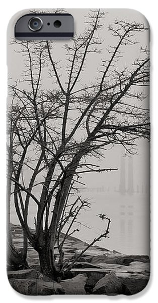 Solitary  iPhone Case by JC Findley