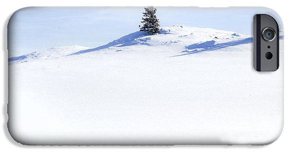 Snow iPhone Cases - Solitary iPhone Case by Theresa Tahara