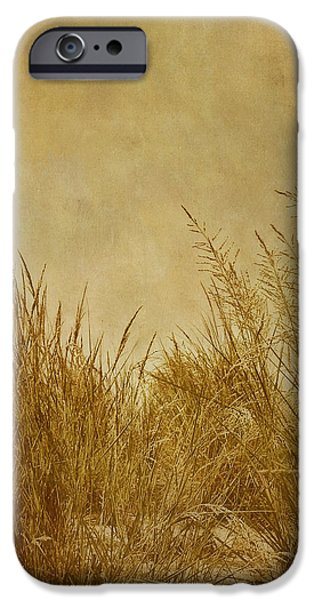 Solitude iPhone Case by Kim Hojnacki