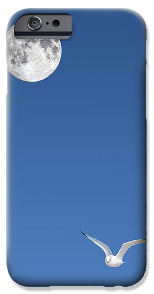 Solitude iPhone Case by Michael Peychich