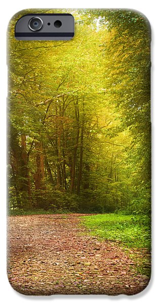 Pathway iPhone Cases - Solitude Path iPhone Case by Christina Rollo
